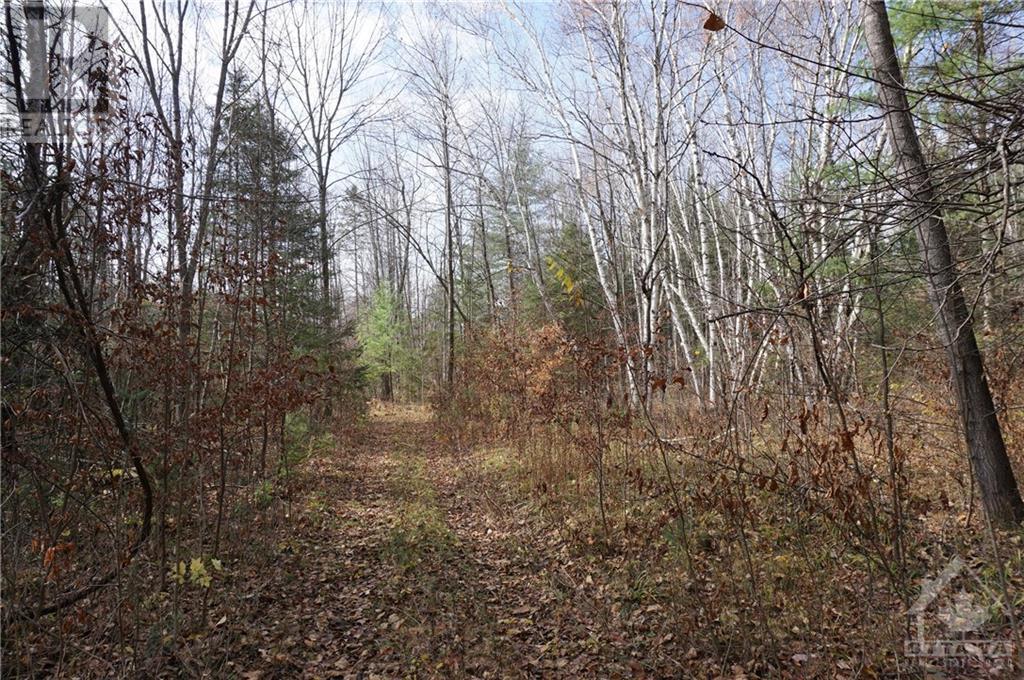 251 Mississippi Drive, Ottawa, Ontario  K7S 3G4 - Photo 11 - 1215329