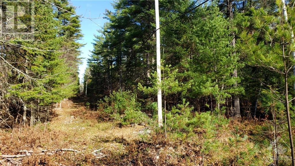 251 Mississippi Drive, Ottawa, Ontario  K7S 3G4 - Photo 17 - 1215329