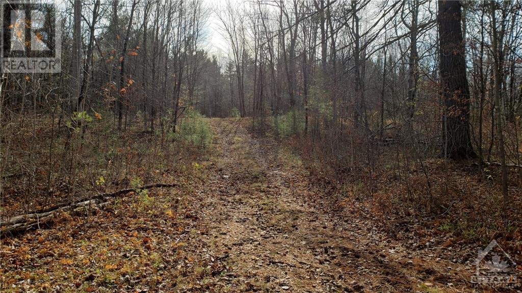 251 Mississippi Drive, Ottawa, Ontario  K7S 3G4 - Photo 20 - 1215329