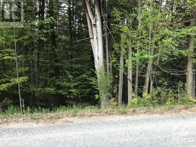 1415 Sheridan Rapids  Lot 2 Road, Lanark Highlands, Ontario  K0G 1K0 - Photo 2 - 1225953