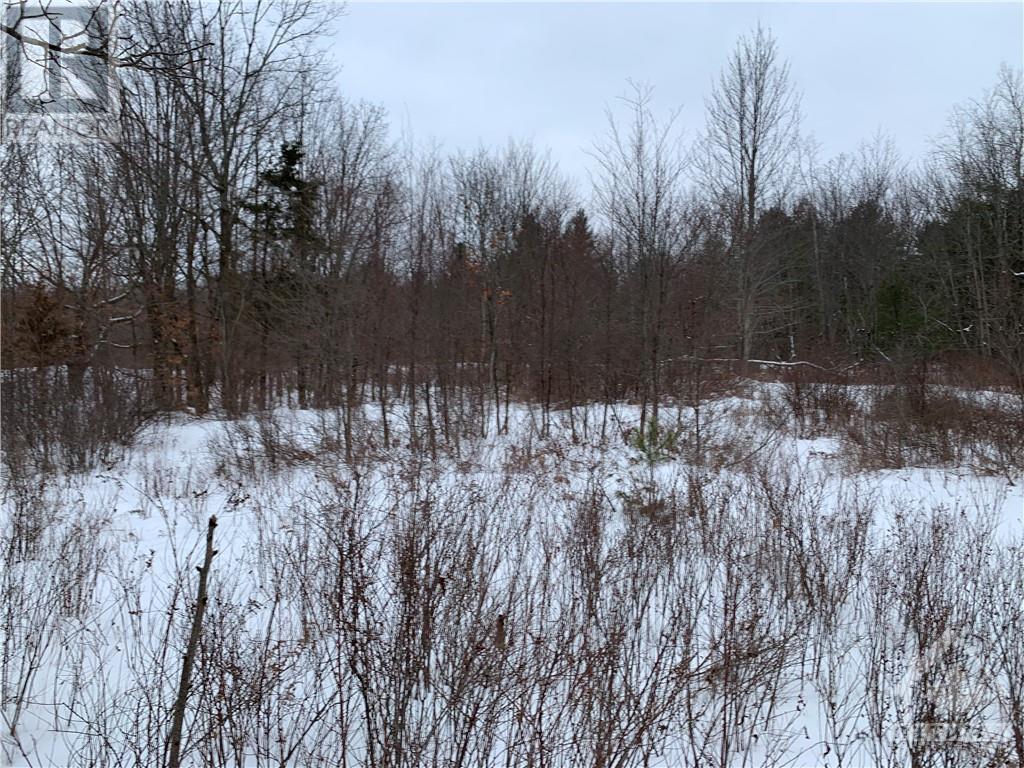 495 Norwood Road Unit#c, Westport, Ontario  K0G 1X0 - Photo 4 - 1227123